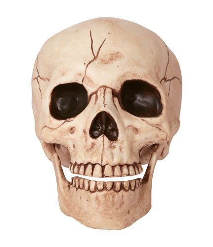 Crazy Bonez Skeleton Skull